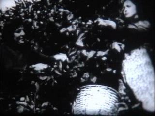 Основные формы рельефа. Горы и равнины (Равнины и горы) / 1990