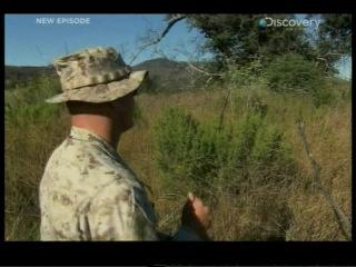 Школа по подготовке снайперов-разведчиков USMC