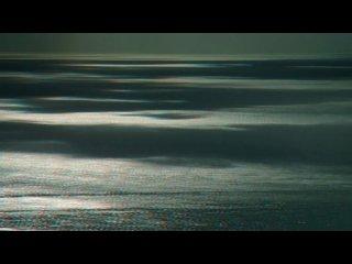 Большое путешествие вглубь океанов 3D: Возвращение (2009) DVDRip