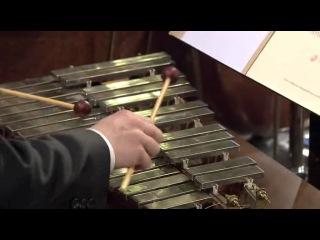 Новогодний концерт Венского филармонического оркестра 2009 (дирижёр Д.Баренбойм). Звучит музыка И. Штрауса.