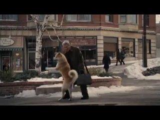 Хатико (конец фильма) это самый лучший фильм про собачку вот что значит преданность !!!