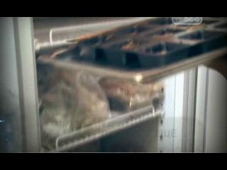 Документальный фильм Еда - выбор жертвы