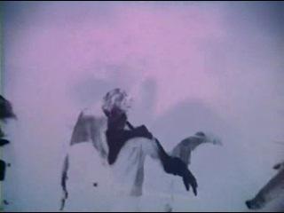 Кислотный тест - Кен Кизи и Веселые Проказники / Acid Test - Ken Kesey And The Merry Pranksters