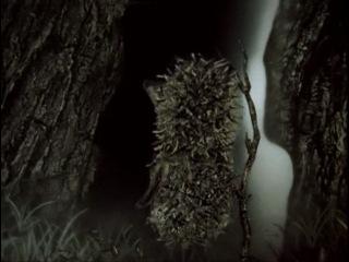 Мультфильм о влиянии наркотиков и галюциногенов на организм: