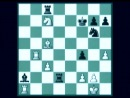 Испанская партия. Разменный вариант  Foxy Openings №69: Fishers Deadly Weapon - Exchange Ruy Lopez (Andrew Martin)