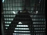Tiziano Ferro - Stop dimentica! - Live in Rome
