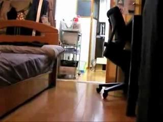 Как надо снимать фильмы ужасов не страшилка   кот