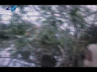 Плёнтэк / Пльонтек ≪Клуб. Фильмы про мальчишек-2 vkontakte.ru/club17492669≫