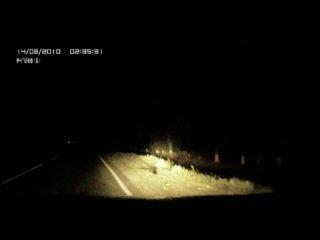 Девушка решила покончить с жизнью! Сказанное водителем имеет огромный смысл!