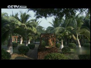 CCTV - Видео блог на русском языке - Путешествия в Китай - Цикл «Остров сокровищ в Южно-китайском море» («Морской мир Буддизма»)