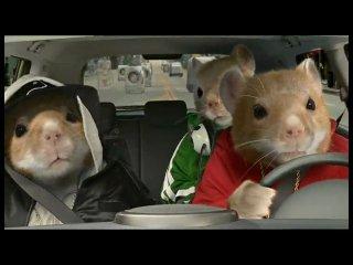 Поющие хомяки в рекламе авто