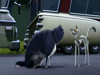 Кот из мультфильма