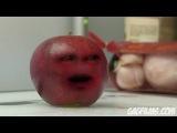 Апельсин достает яблоко! умора ))))