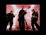Molotov - Rasta mandita