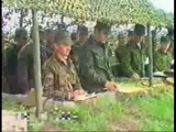 Боевая дивизия