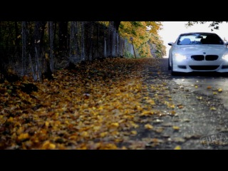 BMW M6 Dab step