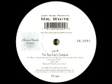 Larry Heard presents Mr. White - The Sun Can't Compare