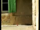 Букашки | Minuscule - Tenace ( 3 сезон )