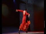 Фламенко (Flamenko) - Очень красивый и чувственный танец