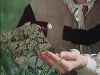 Златовласка / Zlatovlaska (1973)
