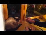 два дебила - это сила... или как научить котЭ курить
