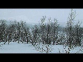 BBC Ребятам о зверятах DISK 2 3 Олененок Роси