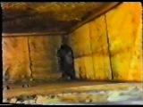 Пчеловодство (обучающий фильм)