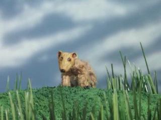 Робоцып - мангуст-прирожденный убийца