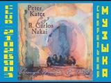 Peter Kater &amp R. Carlos Nakai - Through Windows &amp Walls
