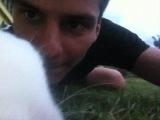 кролик-альбинос. часть 2