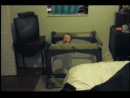 Doberman attacks baby