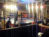 Я и Марат пеков (rus) бой за титул чемпиона европы
