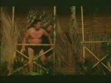 Tarzan (1975)