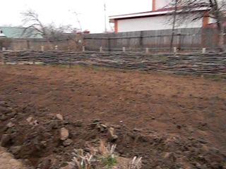 Испытание чудо-лопаты Вятский пахарь на своём огороде (окончание)