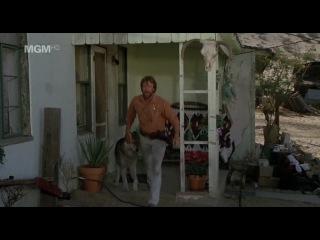 Одинокий волк МакКуэйд / Lone Wolf McQuade (1983, Чак Норрис, Дэвид Кэррадайн)