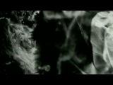 PJ Harvey - Shame