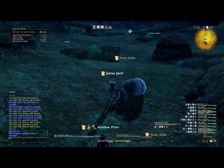 Final Fantasy 14  геймплей (смотрите в лучшем качестве)