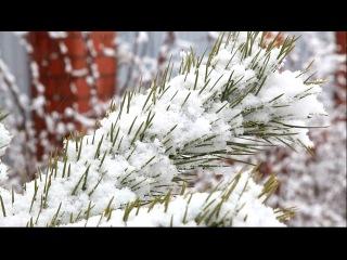 Зима фото первый снег картинки, смотреть фильмы онлайн бесплатно без регистрации в хорошем качестве новинки 2010