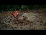 Резня в долине динозавров / Massacre in Dinosaur Valley / 1985 год.