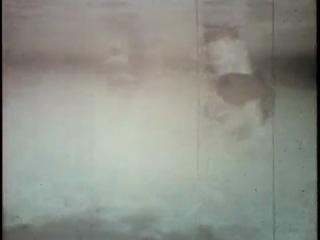 борьба с 10 метровой анакондой под водой