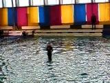 Питер.Дельфинарий на Крестовском острове.