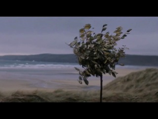 James Vincent McMorrow - Follow You Down to the Red Oak Tree