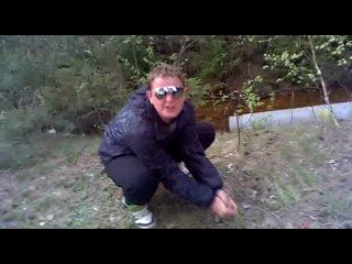 как выжыть в лесу