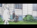 Hayate no Gotoku!  Хаятэ, Боевой Дворецкий - 1 сезон 3 серия [озвучка]