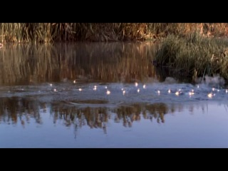 Королева воинов против Рима / Warrior Queen 2003 LoveKino VideoFilms