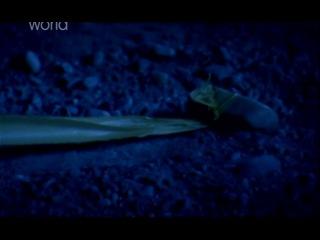 Я не должен был выжить: Одинокий и разбитый - 4 сезон 4 серия (DiscoveryHD.net)