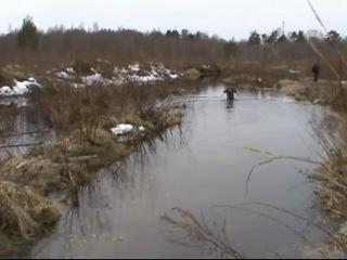 Поганые болота 2011 Разведка 16 04 11