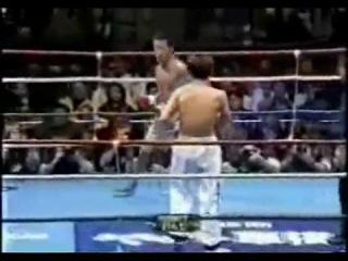 Тхеквондист против бойца карате Кекусинкай » Единоборства онлайн. Видео - бои и тренировки.