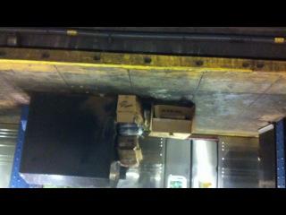 Крысы в метро Нью-Йорка - обычное дело ;)