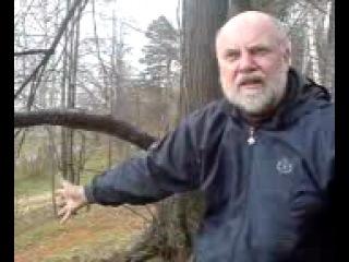 Алексей Широпаев. Жуков